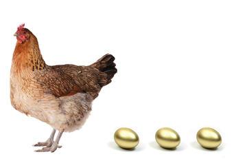 Regione Toscana gallina dalle uova d'oro