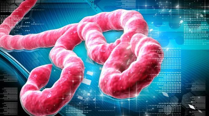 virus_Ebola
